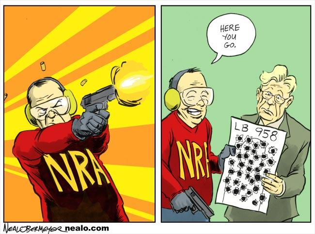 nra national rifle association gun control brad ashford