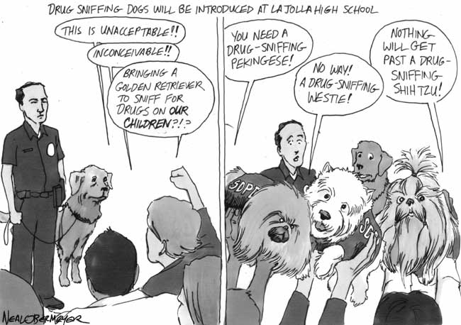 drug sniffing dog la jolla pekingese westie shih tzu