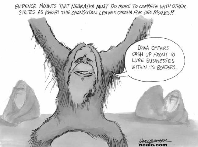 orangutan iowa nebraska compete monkey
